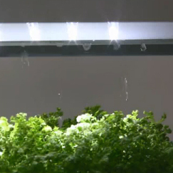 <span>Plantus (for home aquaponics)</span><i>→</i>
